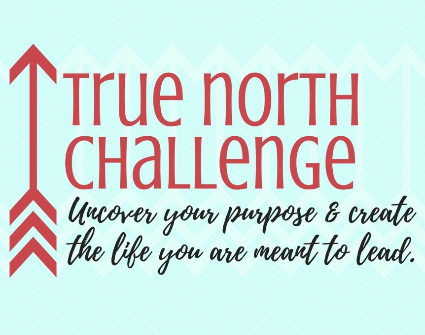 True North Challenge: Uncover your purpose & create the life you are meant to lead.